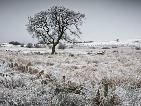 Temperatures barely above freezing as ice and snow warnings continue