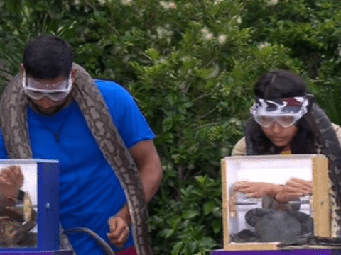 I'm A Celebrity Live Trial pitted girls against the boys and the men emerged victorious