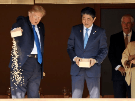 Misleading Trump koi fish video didn't tell the whole story