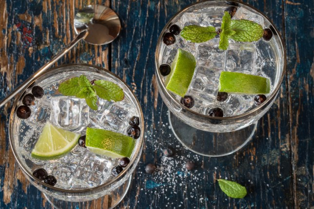 Picture of glasses of gin and tonic, with lime slices and juniper berries