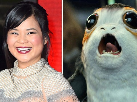 Star Wars: The Last Jedi actor Kelly Marie Tran dressed as a Porg for Halloween and we nearly missed it