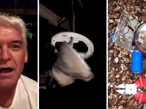 'Oh my God it's still going!': Phillip Schofield destroying an old alarm has saved 2017