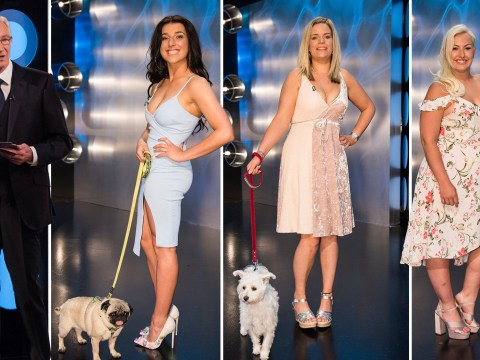 Puppy love: Blind Date returns for a new series with a twist – singletons can bring their dogs on the show
