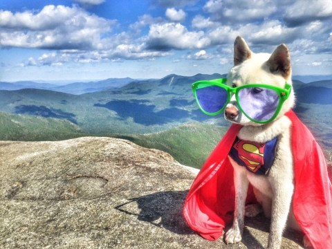 Meet the Wander Woman and Super Pup who are taking on monstrous mountains