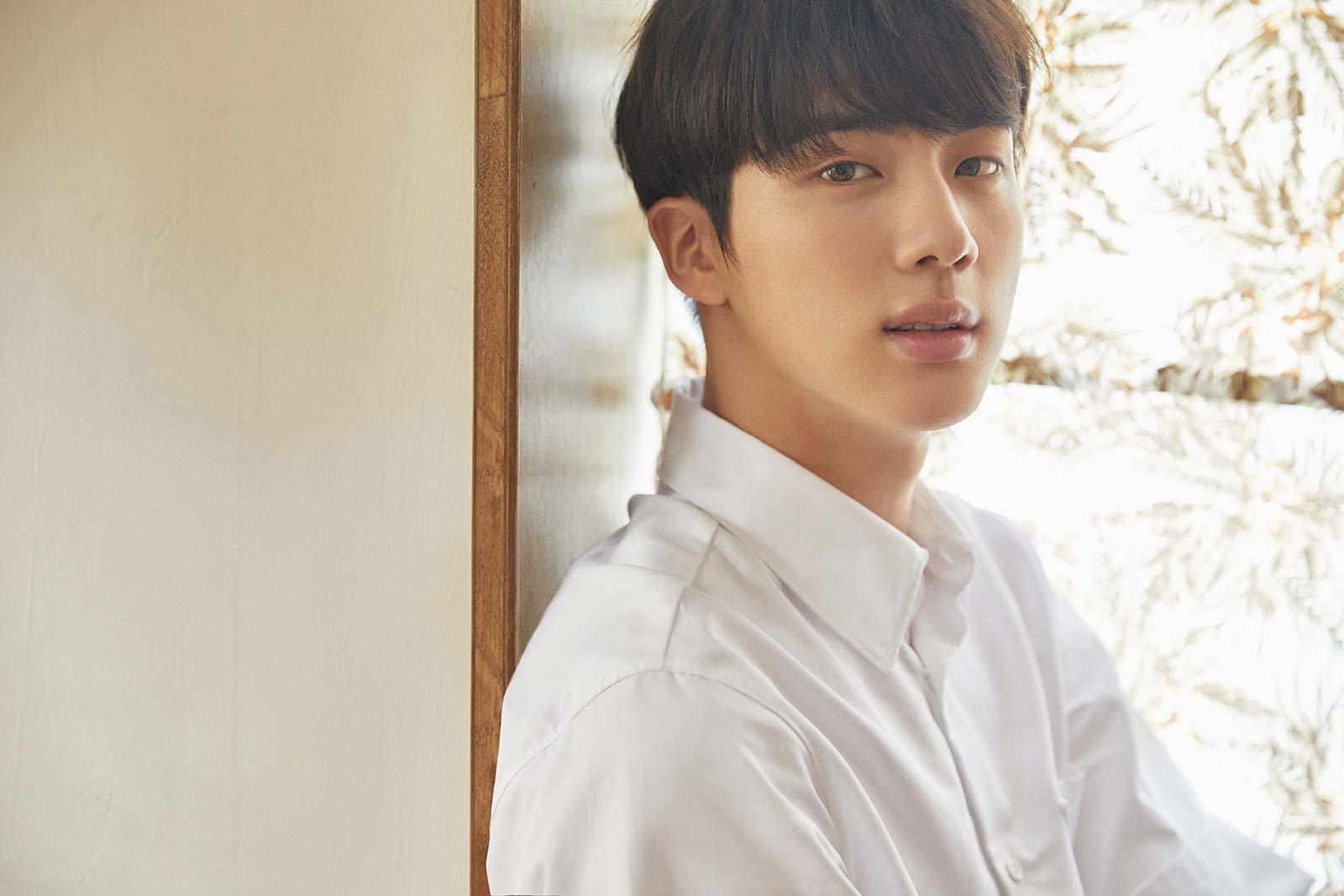 Meet the BTS members, Jin