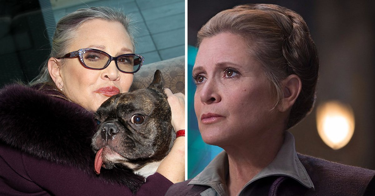 Carrie Fisher's dog Gary's 'ears perked up' when he saw her in The Last Jedi
