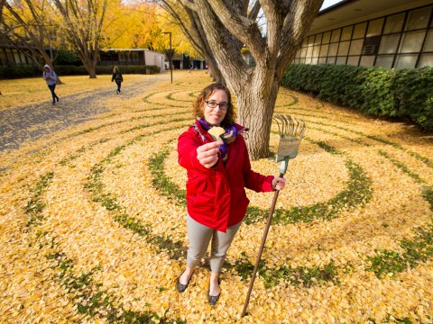 University counsellor spends free time making beautiful leaf artwork for students to discover