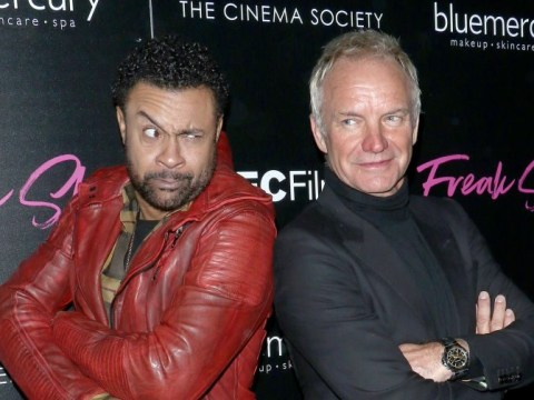 Shaggy and Sting are releasing joint album and we're not sure how we feel