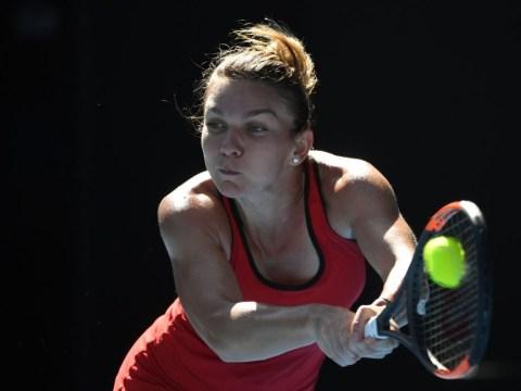 Simona Halep sets up thrilling Angelique Kerber semi-final after powering past Karolina Pliskova