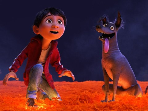 Disney's Coco 'definitely has a big chance of some Oscar love', says film's star