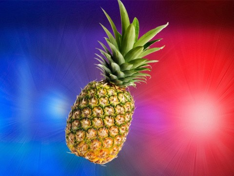 Girl, 14, 'assaulted with pineapple during school lunch break'