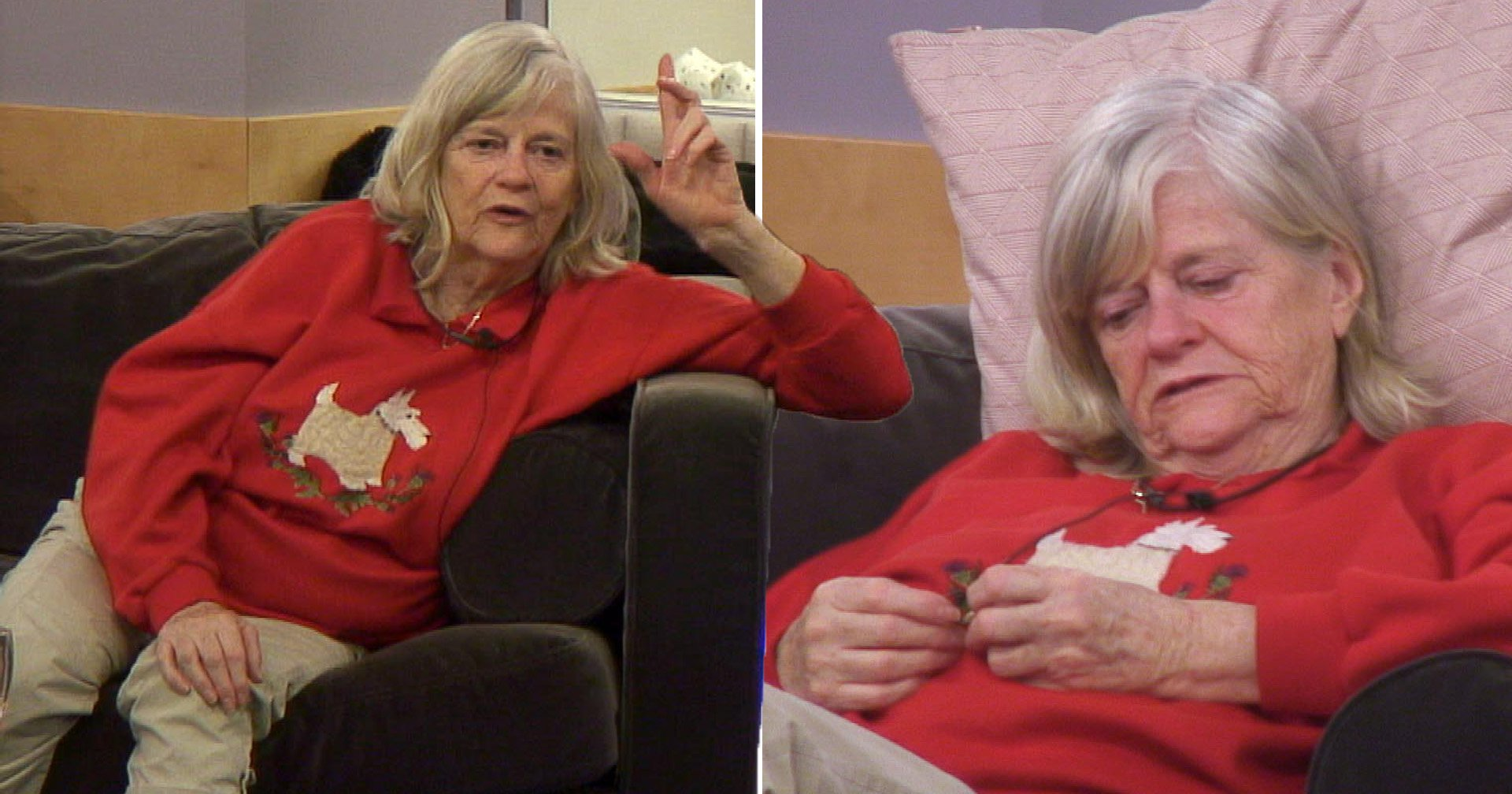 CBB's Ann Widdecombe says she prefers the 'solitary life' as she admits 'Mr. Right never came along'