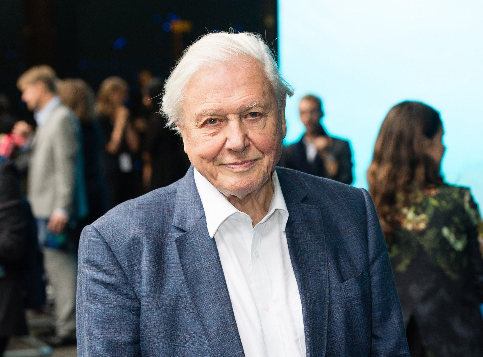 Sir David Attenborough teases new TV show will be 'soap opera' about animals in Africa