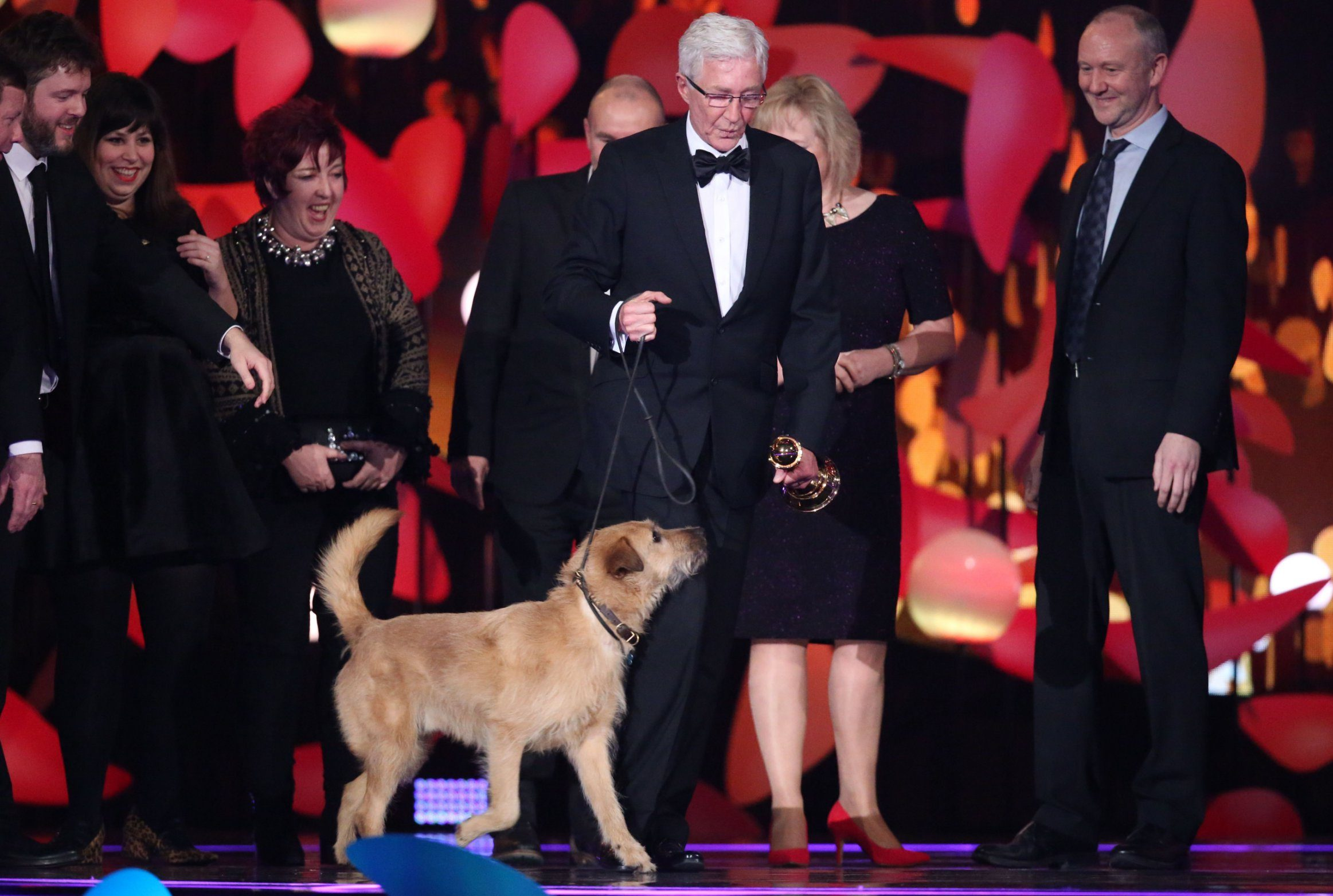 Paul O'Grady honoured with Special Recognition Award at NTAs as cute dogs take to the stage