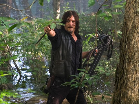 The Walking Dead's Norman Reedus is very excited about Daryl's dynamic with Dwight in season 8