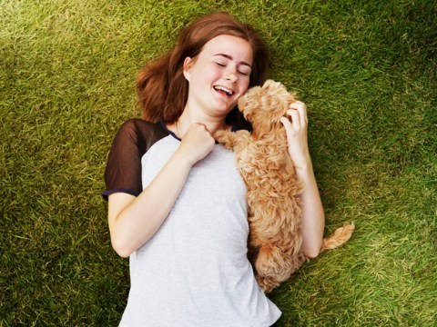 National Love Your Pet Day: 7 people reveal how dogs saved their sanity