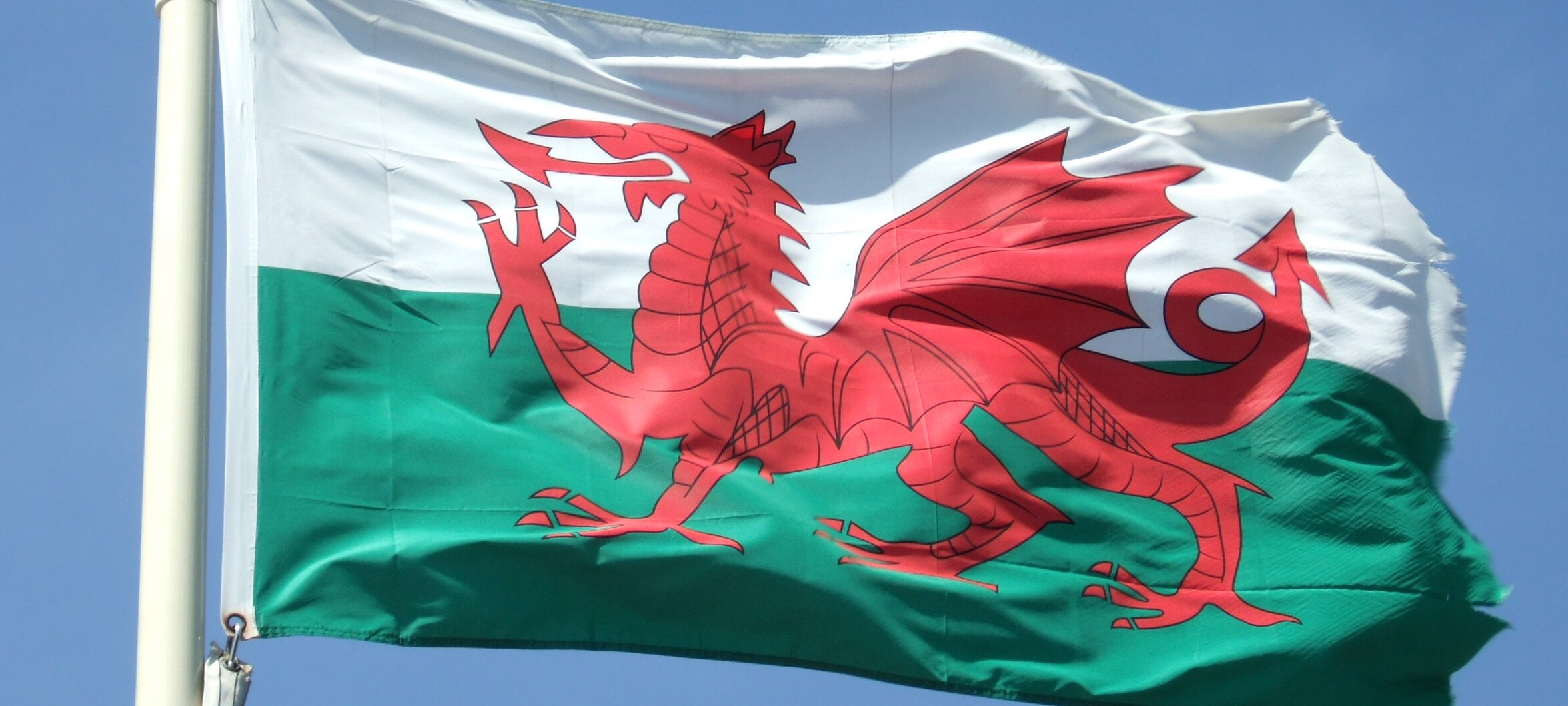 How do you say 'Happy St David's Day' in Welsh?