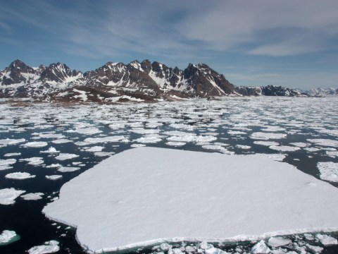 The Arctic's strongest areas of sea ice are now breaking up for the first time