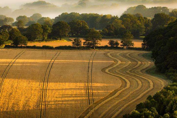 8 reasons why Berkshire is the perfect weekend break