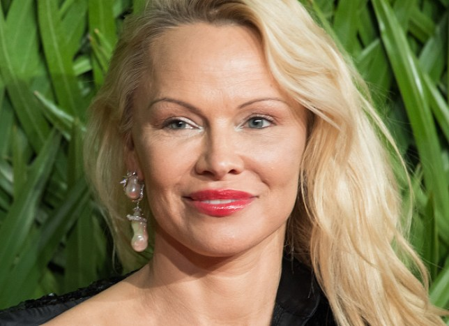Image result for Pamela Anderson: