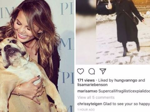 Chrissy Teigen reminds anybody being happy on Instagram that her dog has died
