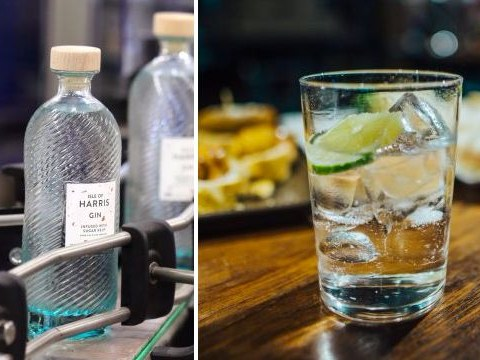 Gin sales have reached an all time high in the UK