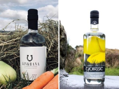 11 great new British gins to try – including gins made from hay and gorse