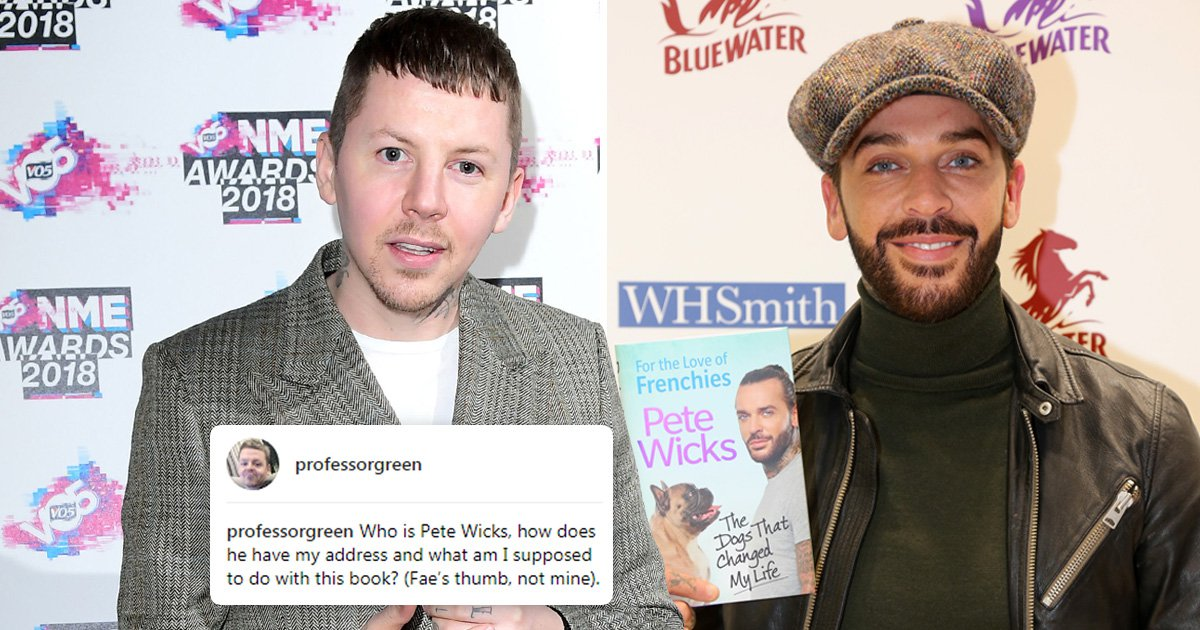 Professor Green ridicules Pete Wicks for sending him his book on dogs