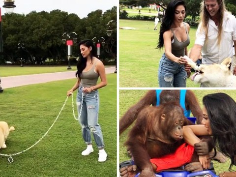 Nicole Scherzinger poses with chained up lions but when will celebs learn that it is not okay?