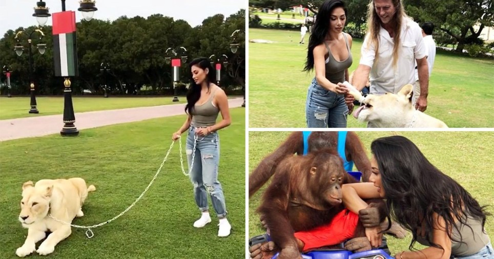 Opinion piece. Nicole Scherzinger slammed by Peta for posing with chained animals