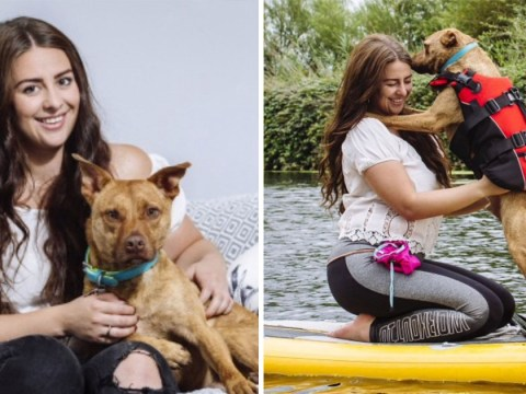 Shy rescue dog overcomes nerves to appear at Crufts with new owner