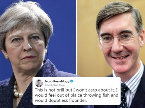 No, Jacob Rees-Mogg isn't going to throw fish into the River Thames