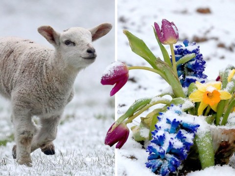 Snow at Easter likely as Beast from the East refuses to die
