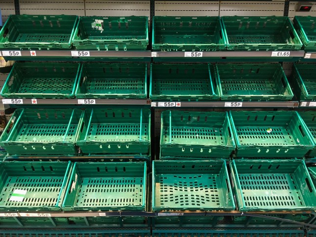 Very little vegetables are instock at the Tesco Supermarket in Plymouth, Devon. This is blamed on the recent bad weather. 04/03/2018