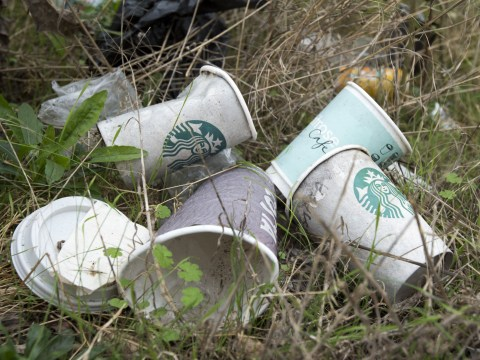 The 'latte levy' would not have solved the coffee cup problem