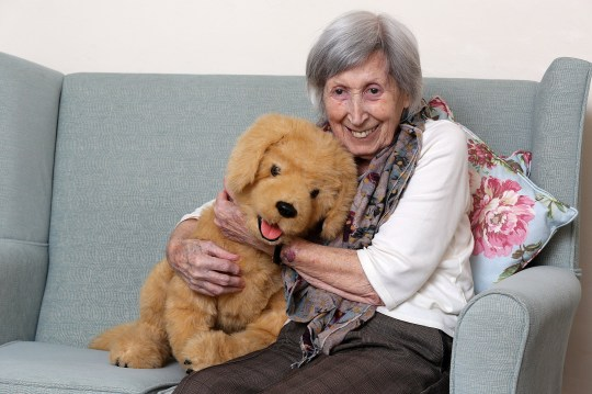 Care home now has robotic horses and dogs to help combat