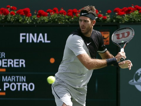 Juan Martin del Potro defeats Roger Federer in incredible Indian Wells final