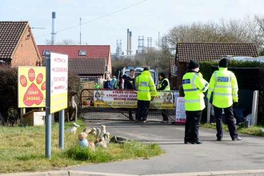 RSPCA, Dogs Trust and police raid 4 Paws dog rescue centre in