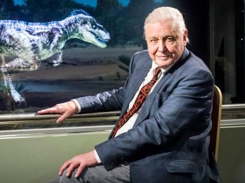 Sir David Attenborough, 91, opens Jurassic World because he's a legend