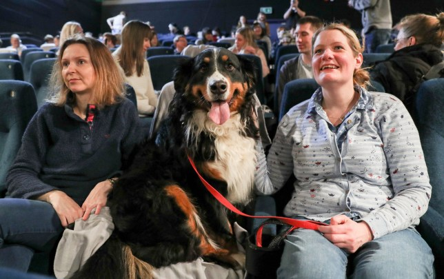 Anna Springett (left) and sister in law Amy Springett with Burnese Mountain Dog Little My, before a dog-friendly screening of Wes Anderson's new film 'Isle of Dogs' at the Harbour Lights Picturehouse in Southampton