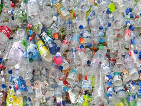How will the plastic bottle deposit scheme work? How much will it cost?