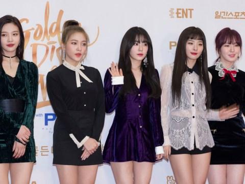 Red Velvet's Joy gets hate for not joining group for North Korea concert