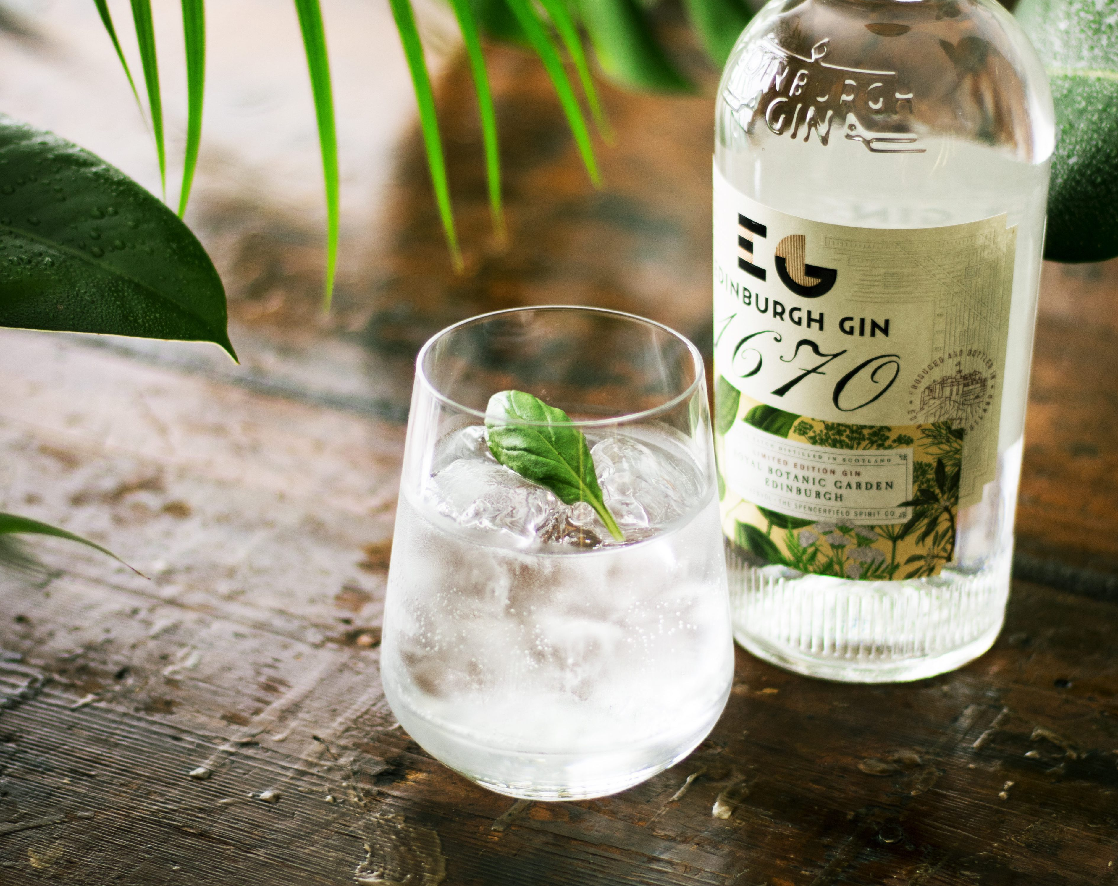 9 things you never knew about gin botanicals and their health-boosting properties
