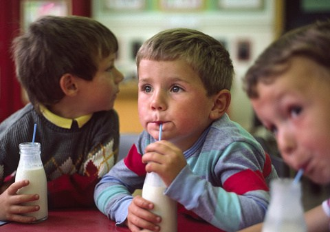 Best dairy and soya free alternatives for children allergic to cow's milk