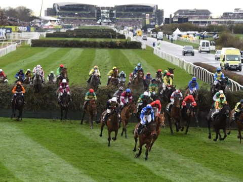 How many horses run in the Grand National and what are the runners this year?