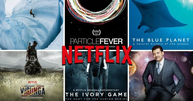 Best nature documentaries on Netflix (Robert Keeling)