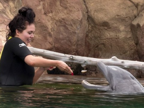 Scarlett Moffatt plays with dolphins on dream holiday after shock Lee Wilkinson split