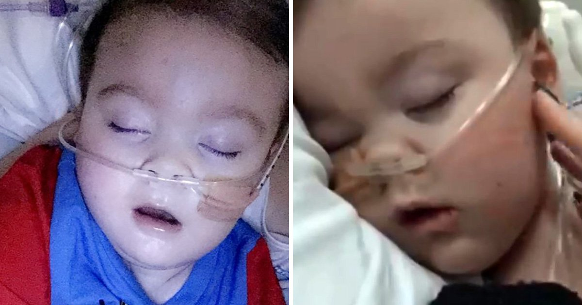 Alfie Evans jokes about being raped have got a warehouse worker sacked