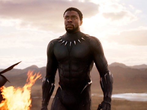 Black Panther nominated for Best Picture as it picks up seven Oscar nominations