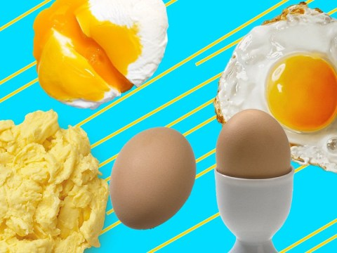 An ode to eggs, the single greatest food in the world